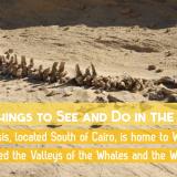 Egyptian Sidekick Fayoum Oasis Hitan Rayan