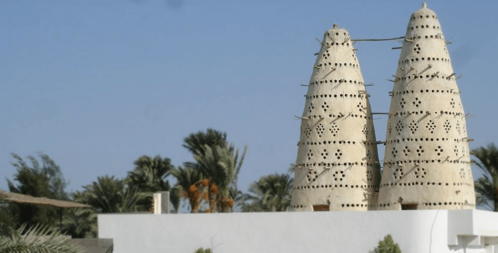Egyptian Sidekick Fayoum Pigeon Towers