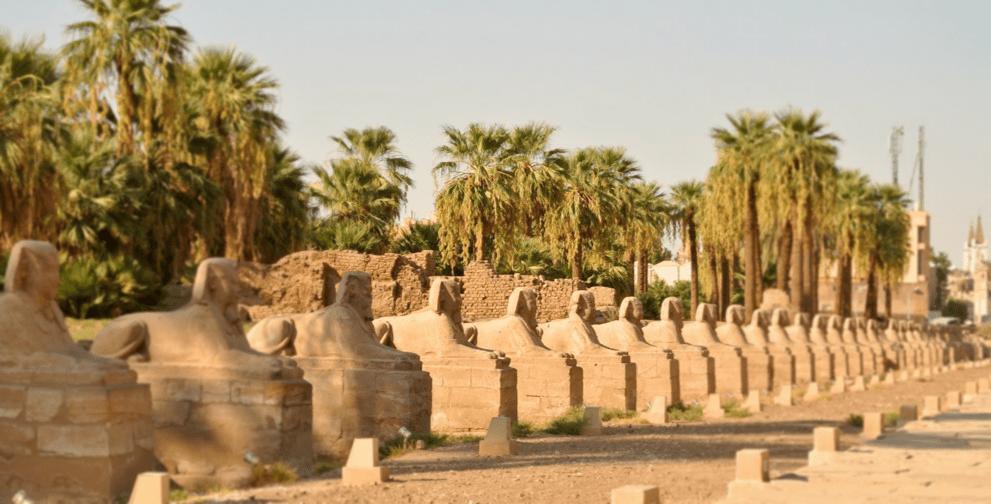 Sphinx Avenue Luxor